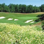 Stonehouse Golf Packages