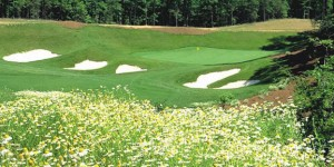 https://www.virginiagolfvacations.com/wp-content/uploads/2014/12/unlimited-golf-wpcf_300x150.jpg