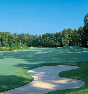 Golden Horseshoe Golf Club Green Course golf hole